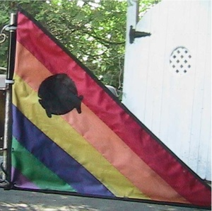 jim mantas trailer flag