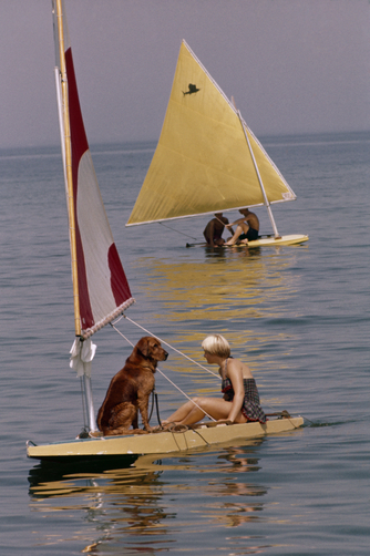 Two Sailfishes, one skippered by a dog and a girl, idle on flat seas.